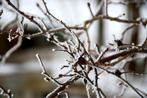 27. März 2013 - Ein frostiger Ostergruss