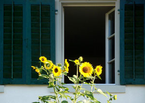10. September 2012 - Lass die Sonne herein!