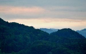 28. Juni 2013 - Aus meinem Fenster: Tag für Tag das gleiche Bild