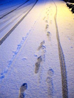 04. Februar 2013 - Spuren im Schnee