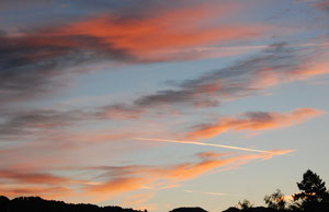 04. Oktober 2012 - Morgenstund