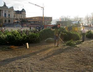 27. Dezember 2012 - Weihnacht 2012 wird weggeräumt