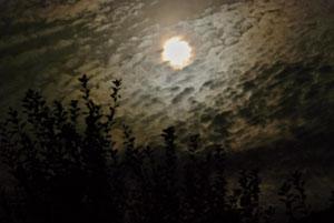 """19. Oktober 2013 - Himmelsfeuer - Jeder Schleier, jede Wolke birgt in sich ein neues Bild und im Rauschen mit den Wellen wird man wieder wie ein Kind (O18. Oktober 2013 - """"Der Herbst ist ein zweiter Frühling, wo jedes Blatt zur Blüte wird."""" (Albert Camus)"""