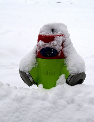 09. Februar 2013 - Hinni 3-125 watet durch den Schnee