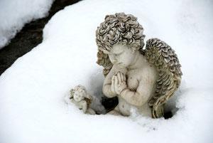25. Januar 2013 - Chef, lass es wärmer werden oder schenk uns Kleider!