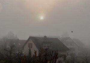 12. März 2013 - Im Nebel versunken