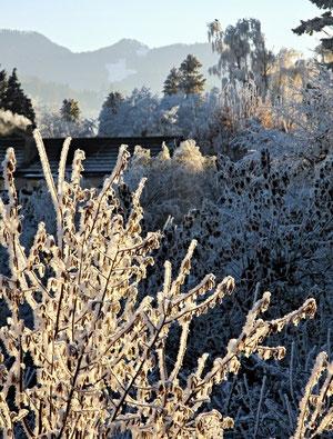14. Dezember 2013 - Es ist kalt (geworden) in Bubikon