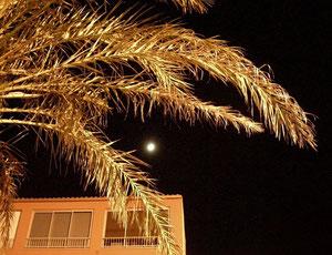 19. April 2013 - O schwöre nicht beim Mond, dem wandelbaren (Shakespeare)