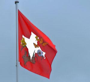 03. Mai 2013 - Eine Schweizerfahne, ein Frühlingsfahne oder beides?