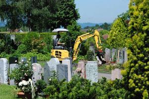 13. Juni 2013 - Statt auferstanden - ausgegraben
