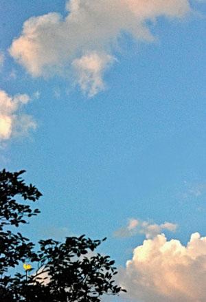 03. August 2013 - Früher war Sommer einfach Sommer, mal heiss, mal wolkig, mal Regen - heute ist es ein Medienereignis