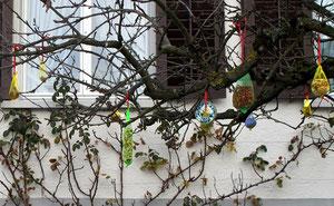 28. Januar 2012 - Lieben Vögel Farben?