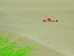 06. Juli 2013 - Brennend heisser (Wüsten)Sand...