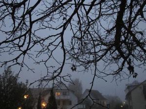21. November 2013 - Der blaue Himmel versteckt sich hinter Hoch- und Tiefnebel - vom frühen Morgen bis zum späten Abend.