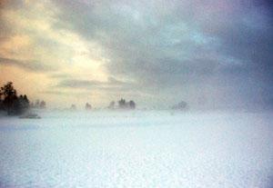 Schneelandschaft, Nebel