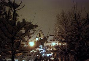 08. Februar 2013 - Nächtlicher Schneezauber