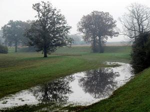 22. Oktober 2012 - Grüne Auen im Nebel