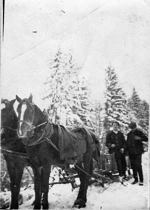Pferdekutsche vermutlich Dermbach Ahnenforschung Gehb von Edith Leis