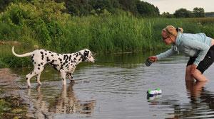 Давай, Кармен, заходи в воду!