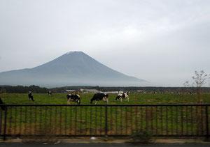 富士山の雪化粧は、見る位置によってずいぶん違うということを実感。これはもうすぐ裾野という辺りだ