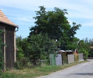 """Feldweg -  """"Marienweg"""" (Garteneingang)"""