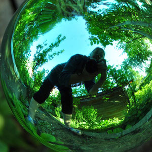 """In the Green"" - Rosenkugel mit Fisheye-Effekt"