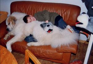 Ja, hier dürfen Hunde - in diesem Fall Regent - auf´s Sofa.