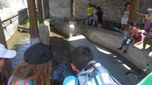 le lavoir de Loubajac