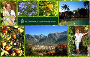 www.prinzessin-stolberg.com