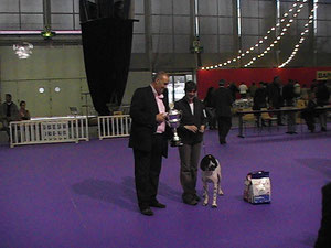 Best in Show Grenoble 2010