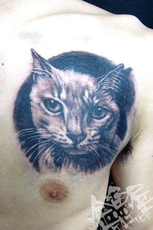 ポートレート 猫 リアル 写真 タトゥー