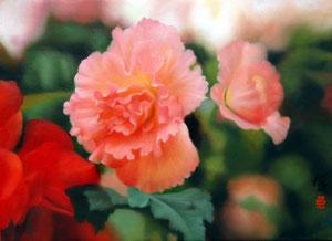 【花・植物】