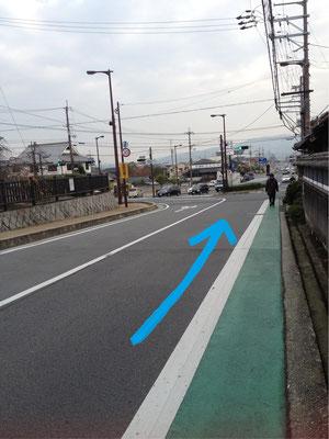 左側だと途中で渡れなくなるので、右側の道を歩くようにしてください