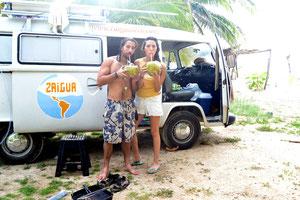 Cocos para desayunar, cosecha de las plameras de Raúl
