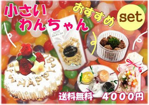 犬ケーキ,無添加わんちゃんおやつのセット,送料無料4000円セットWANBANAワンバナ