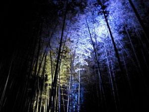 剛好碰到嵐山竹林點燈