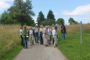 Kräuterwanderung (Foto: Gerold Franke)