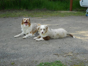 Nala und Pablo (Ghosteyes Athos)