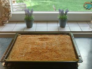 Kokos-Buttermilch-Blechkuchen