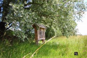 4 Sterne Hotel für Insekten    -  Foto: A. Bürgener