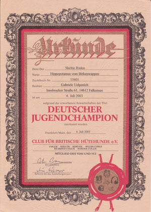 Deutscher Jugendchampion