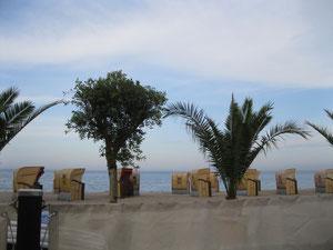 Palmenstrand in Timmendorfer Strand