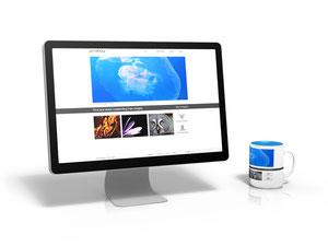 Günstige Website Responsive Design Smartphone und Tablet optimiert