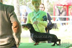 Чунга-Чанга, 7,5 мес (фото Анны Швец)