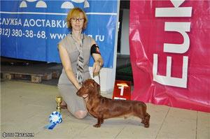 Руди - Лучший юниор монопородного Чемпионата и ЛПП
