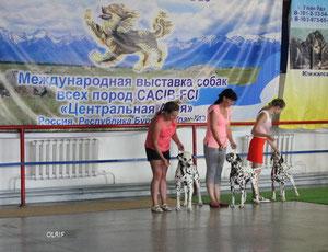 Улан-Удэ- 13, конкурс питомников