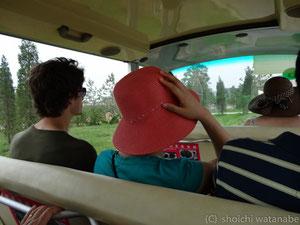 中は広いので、ちょっとした電動の乗り物に乗って散策をします