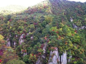 10月20日の鳴子峡です・・・今年は紅葉が遅れているとか・・・でもでも刻々と自然は変化しているようです。