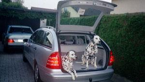 Diana und Feger zur Ausfahrt bereit