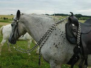 Halsriemen mit den Zügeln am Pferd